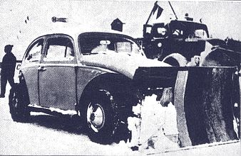 Snow car Beetle